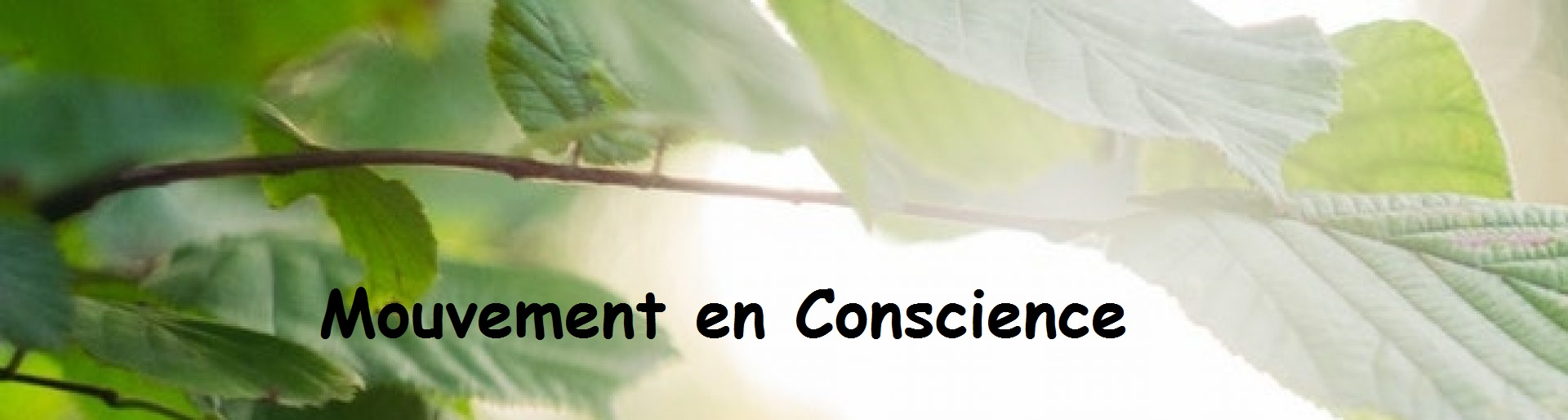 Mouvement en Conscience